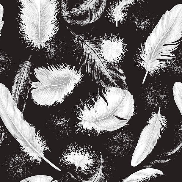 ilustrações, clipart, desenhos animados e ícones de flying white plumes on black - texturas de pelo de animal