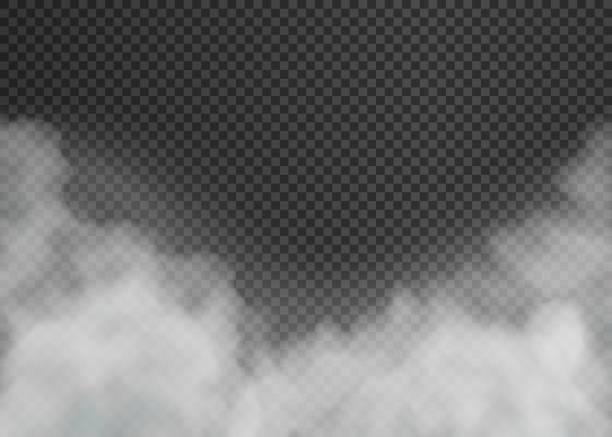 ilustraciones, imágenes clip art, dibujos animados e iconos de stock de niebla o humo aislado sobre fondo transparente. ilustración vectorial. - smoke