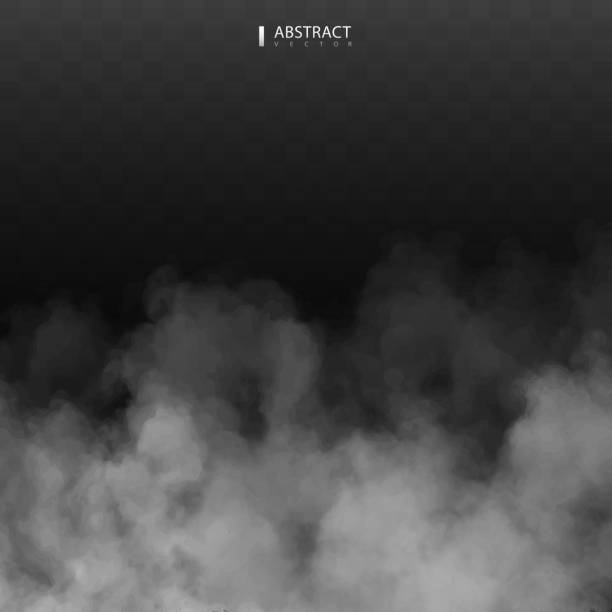 fog or smoke isolated transparent special effect. happy halloween. halloween composition. white vector cloudiness, mist or smog background. vector illustration - туман stock illustrations