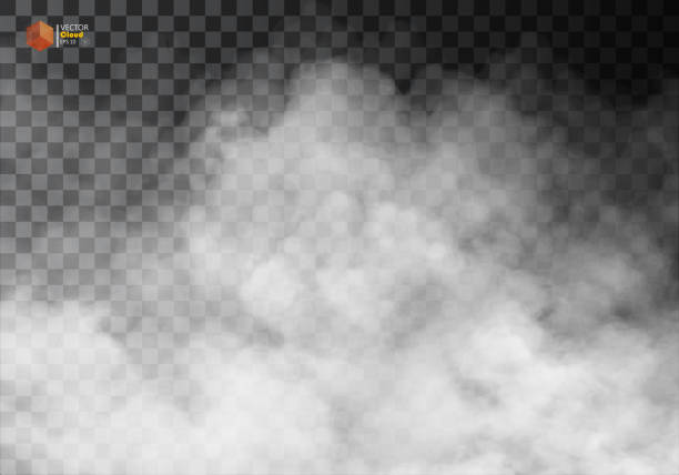 Fog or smoke isolated transparent special effect. Fog or smoke isolated transparent special effect. White vector cloudiness, mist or smog background. Vector illustration environmental issues stock illustrations