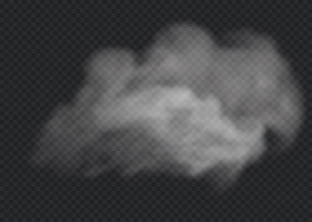 fog or smoke isolated transparent special effect. white vector cloudiness, mist or smog background. vector illustration - туман stock illustrations