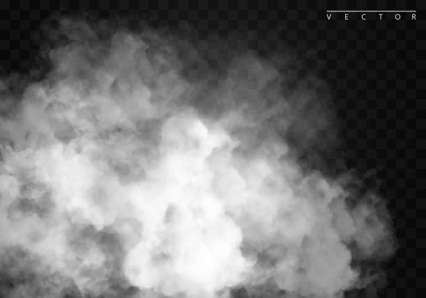 Fog or smoke isolated transparent special effect. White vector cloudiness, mist or smog background. Fog or smoke isolated transparent special effect. White vector cloudiness, mist or smog background. Vector illustration environmental issues stock illustrations