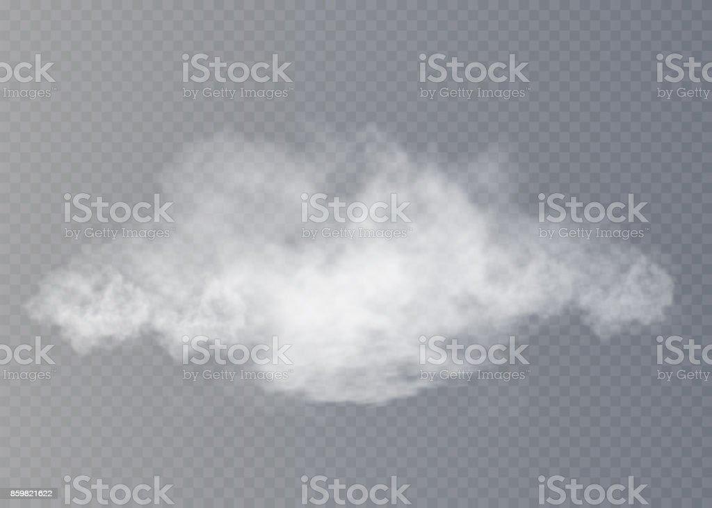 Sis veya duman izole şeffaf özel efekt. Beyaz vektör yoğunluğunun, sis veya smog arka plan. Vektör çizim vektör sanat illüstrasyonu
