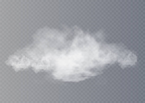 fog or smoke isolated transparent special effect. white vector cloudiness, mist or smog background. vector illustration - clouds stock illustrations