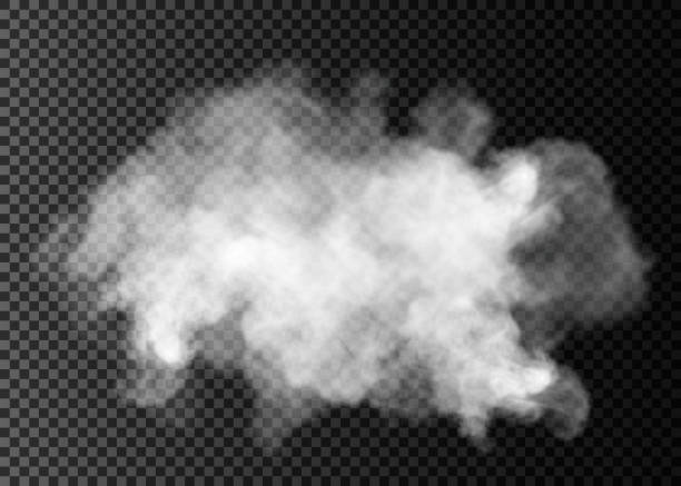 fog or smoke isolated transparent special effect. white vector cloudiness, mist or smog background. vector illustration - smoke stock illustrations