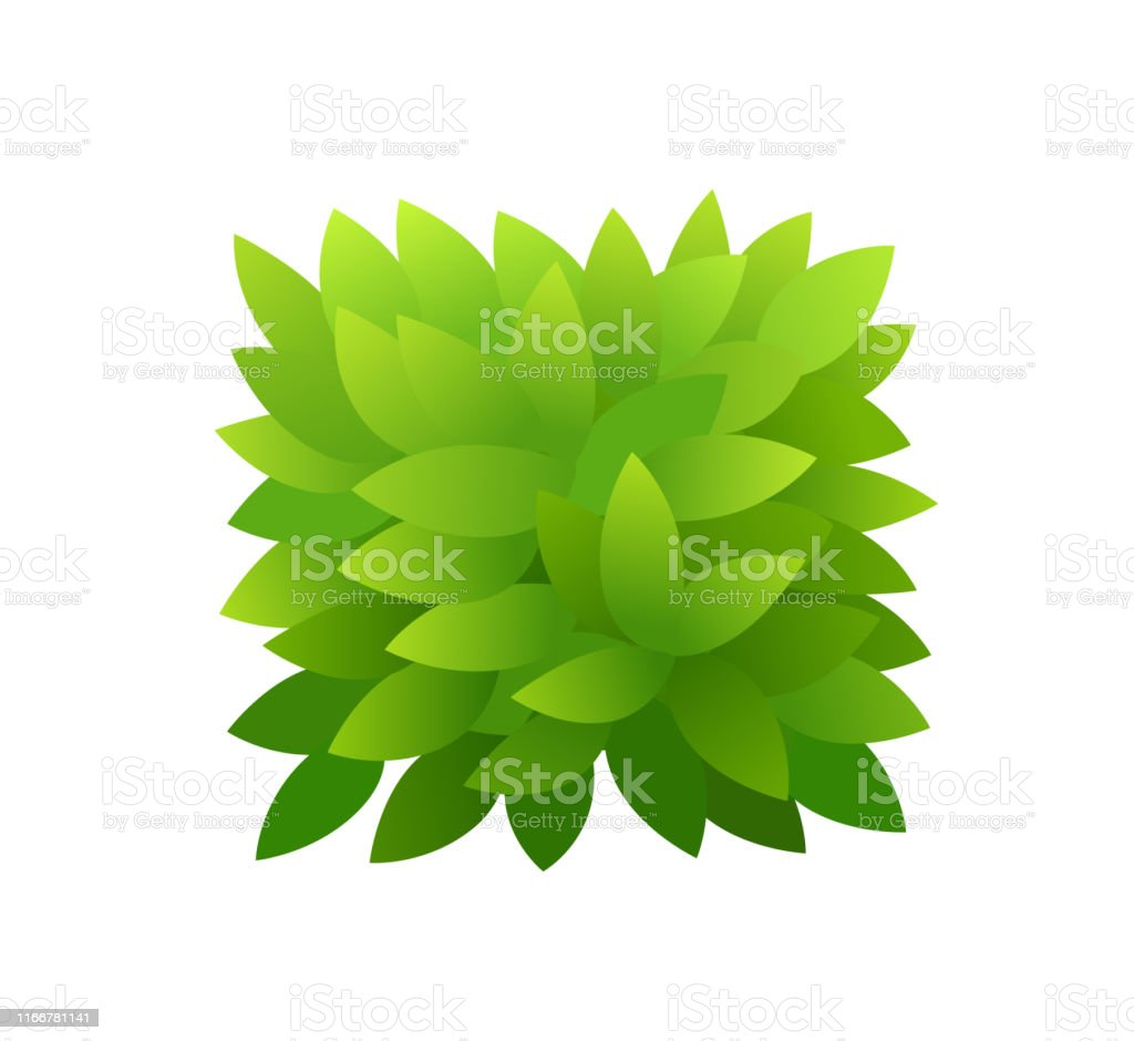 Foliage bush of green leaves. Horizontal rectangular short banner....