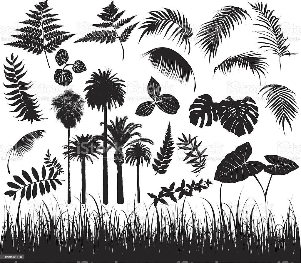 foliage elements