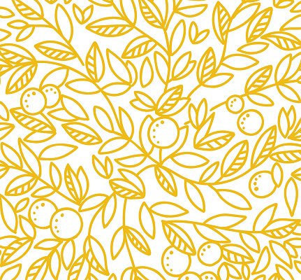 Foliage tree pattern background. Orange or tangerine the fruit leaves. Orange colour line contour. Sketch vector Illustration hand-drawn.