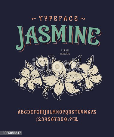 Font Jasmine. Craft retro vintage typeface design. Graphic display alphabet. Historic style letters. Latin characters and numbers. Vector illustration. Old badge, label, logo template.