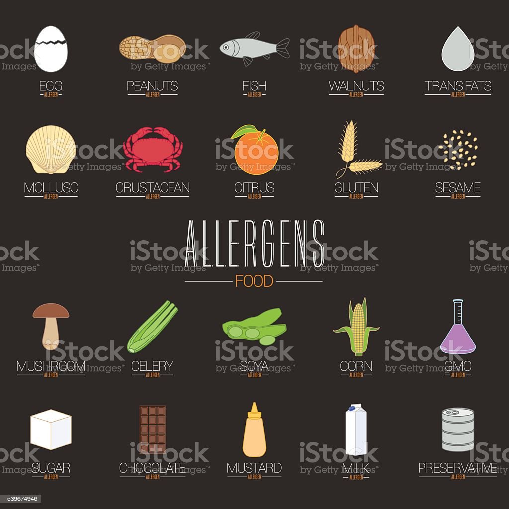 Food allergen icons vector set (gluten, lactose, GMO, nuts, etc.) vector art illustration