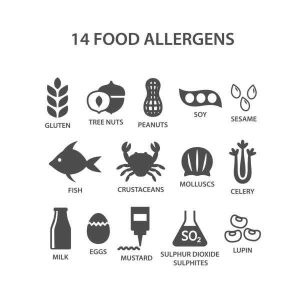 ilustraciones, imágenes clip art, dibujos animados e iconos de stock de conjunto de iconos de alimentos alergénicos. negro había aislado 14 alérgenos alimentarios con conjunto de vector de nombres de texto. - alergias alimentarias