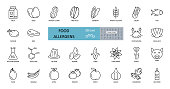 Food allergens icon. Vector set of 28 icons with editable stroke. The collection contains most allergenic products, such as gluten, fish, eggs, shellfish, peanuts, lupine, soy, celery, milk, tree nuts