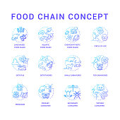 Food chain concept icons set. Primary, secondary and tertiary consumers. Small and top carnivores. Life cycle idea thin line RGB color illustrations. Vector isolated outline drawings