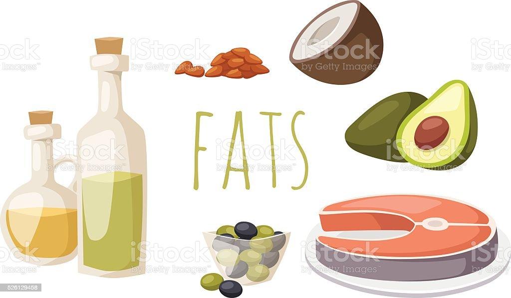 Comidas grasas buen acceso en proteínas aislado sobre blanco aguacate - ilustración de arte vectorial