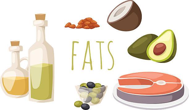 bildbanksillustrationer, clip art samt tecknat material och ikoner med food fats good high in protein isolated on white avocado - omega 3