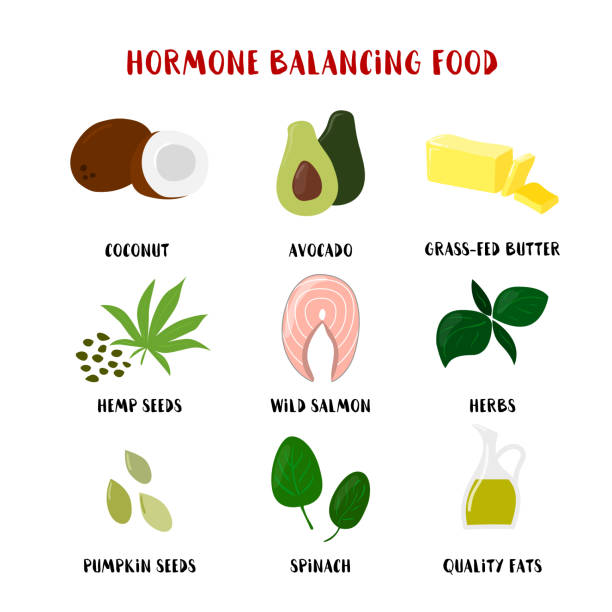 ilustrações de stock, clip art, desenhos animados e ícones de food for hormone balancing set isolated on white. vector cartoon style product icons illustration - woman eating salmon