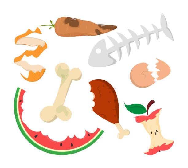 ilustraciones, imágenes clip art, dibujos animados e iconos de stock de vector de basura alimentaria aislado. residuos orgánicos - leftovers