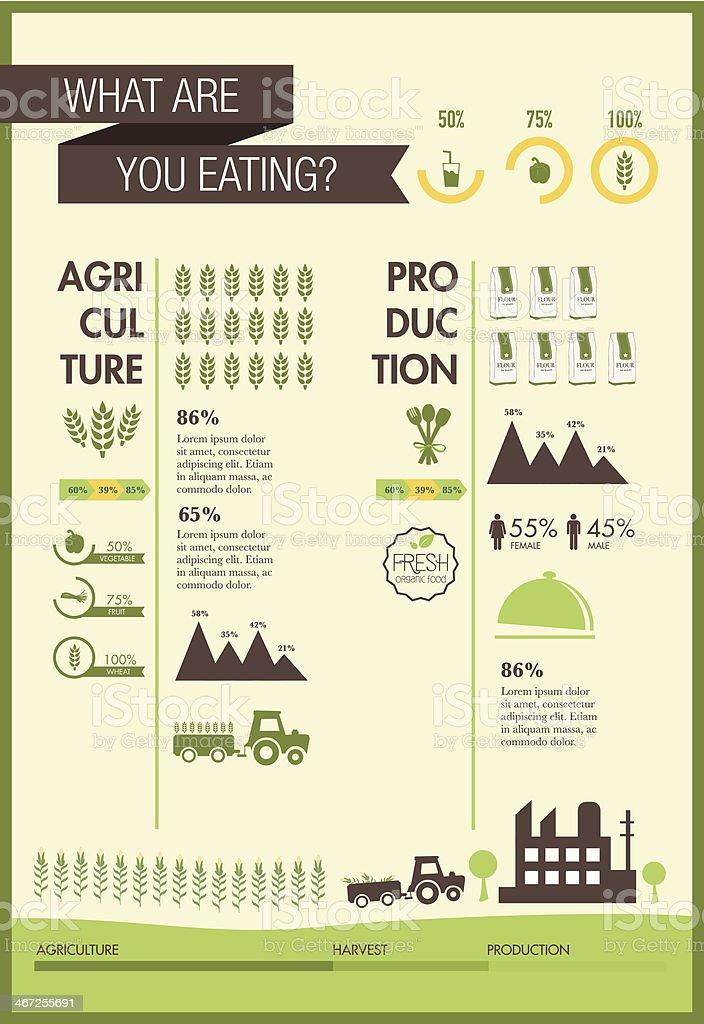 Food Infographic elements design vector vector art illustration