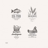 Food logo collection. Engraved logo set. Vector illustration