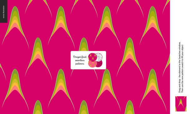 Best Pitaya Illustrations, Royalty-Free Vector Graphics