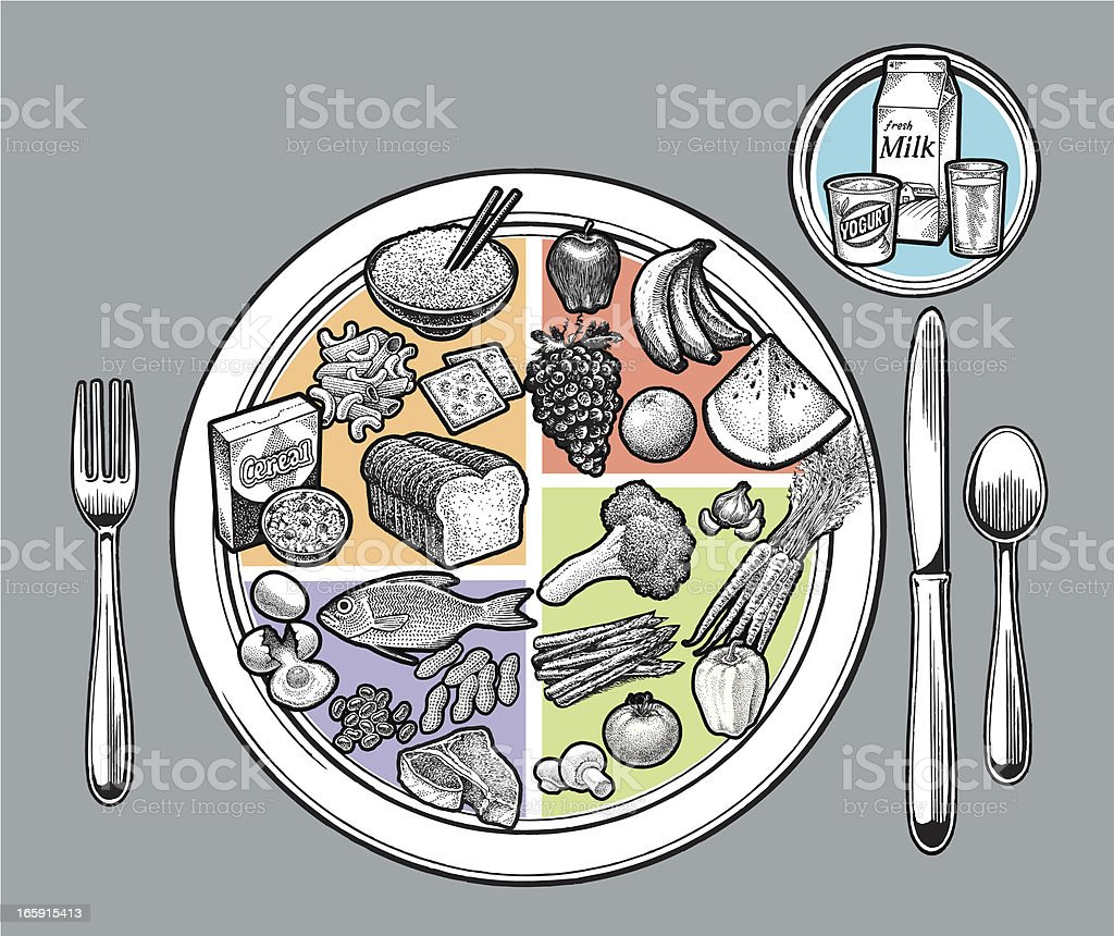Food Plate - Fruit, Vegetable, Protein, Grain, Dairy vector art illustration