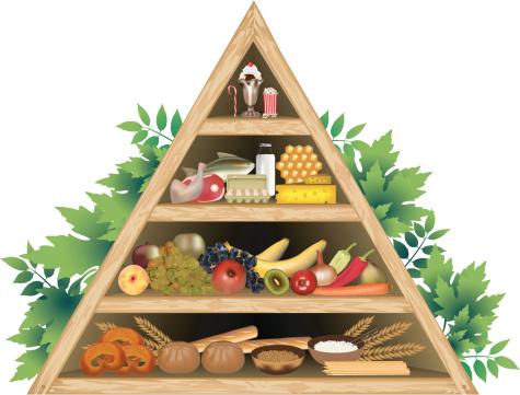 Food Pyramid Diet