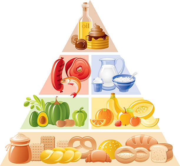 food pyramid set - healthy eating stock illustrations, clip art, cartoons, & icons