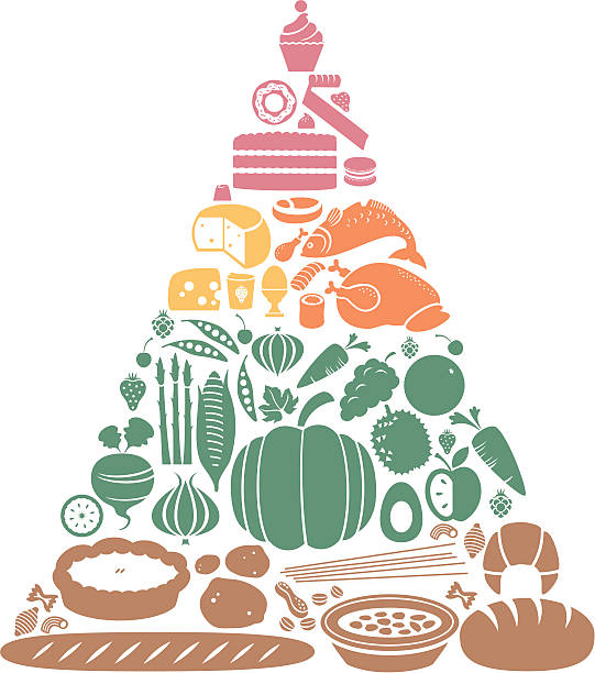 Food Pyramid A food pyramid showing the main food groups. Click below for more food and drink images. avocado silhouettes stock illustrations