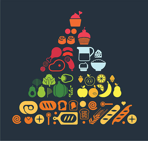 Food pyramid Composition with food pyramid set. ZIP includes large JPG (CMYK), PNG with transparent background. avocado silhouettes stock illustrations