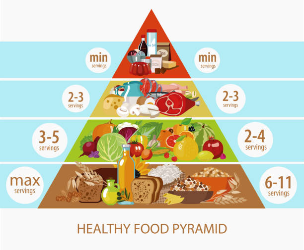 326 Food Pyramid Illustrations Royalty Free Vector Graphics Clip Art Istock