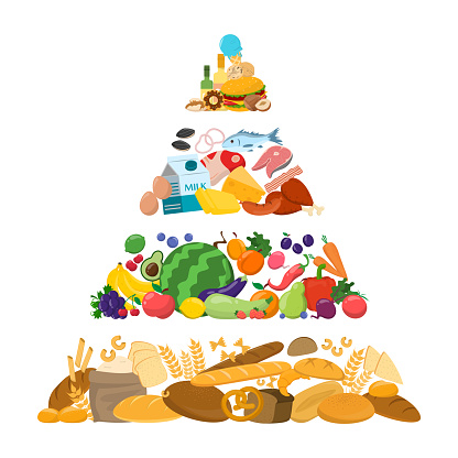 Food pyramid vector isolated. Bread and cereal