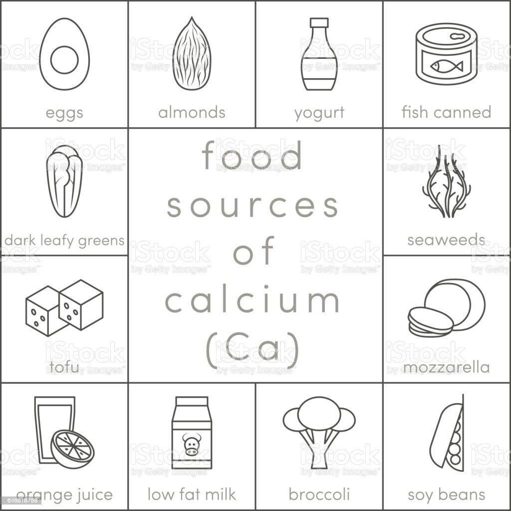 Food sources of calcium vector art illustration