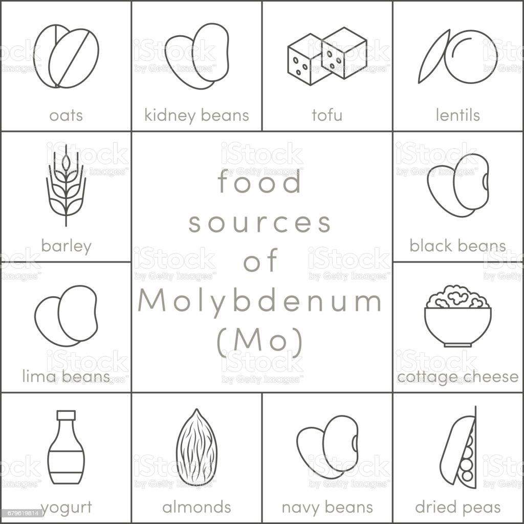 Food sources of molybdenum vector art illustration