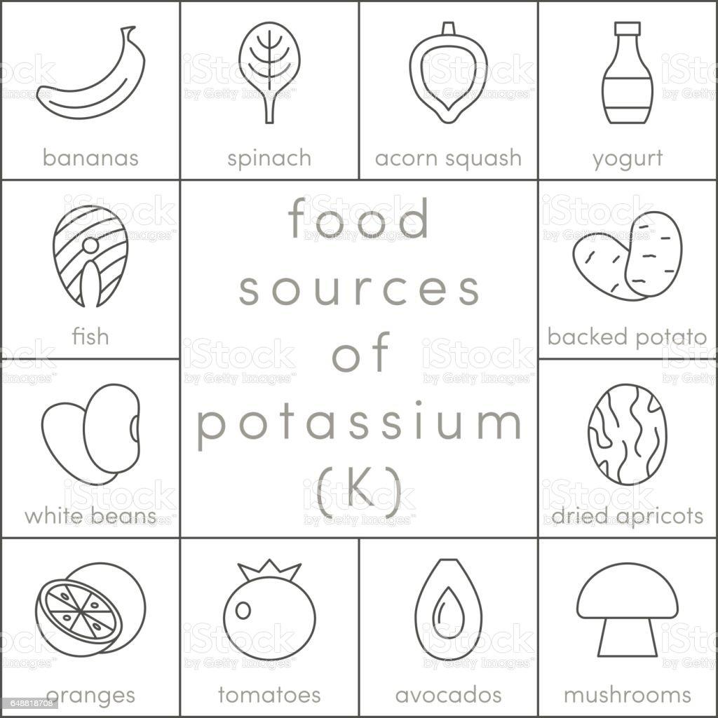 Food sources of potassium vector art illustration