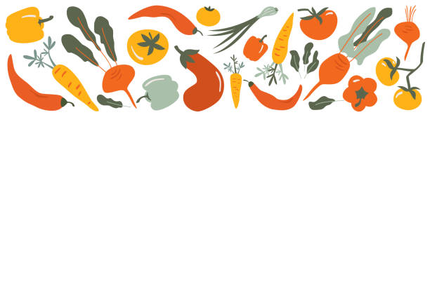 Food  vector border frame of Flat hand drawn vegetables Food  vector border frame of Flat hand drawn vegetables background for Vegan, farm, eco design cooking borders stock illustrations