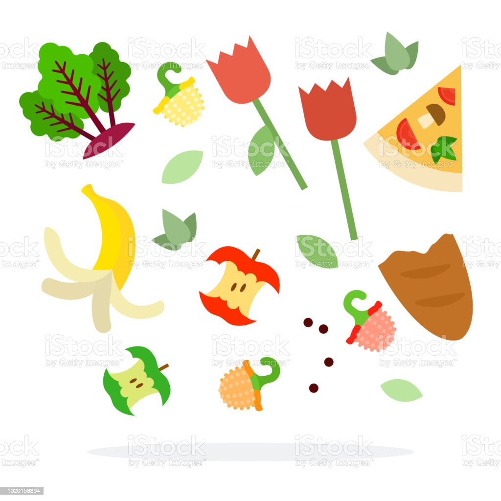 Desperdício de alimentos para vector plana isolada de triagem de lixo - ilustração de arte em vetor