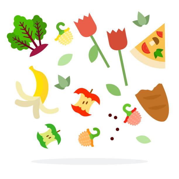 ilustraciones, imágenes clip art, dibujos animados e iconos de stock de desechos de alimentos para la basura, ordenar vector plano aislado - leftovers