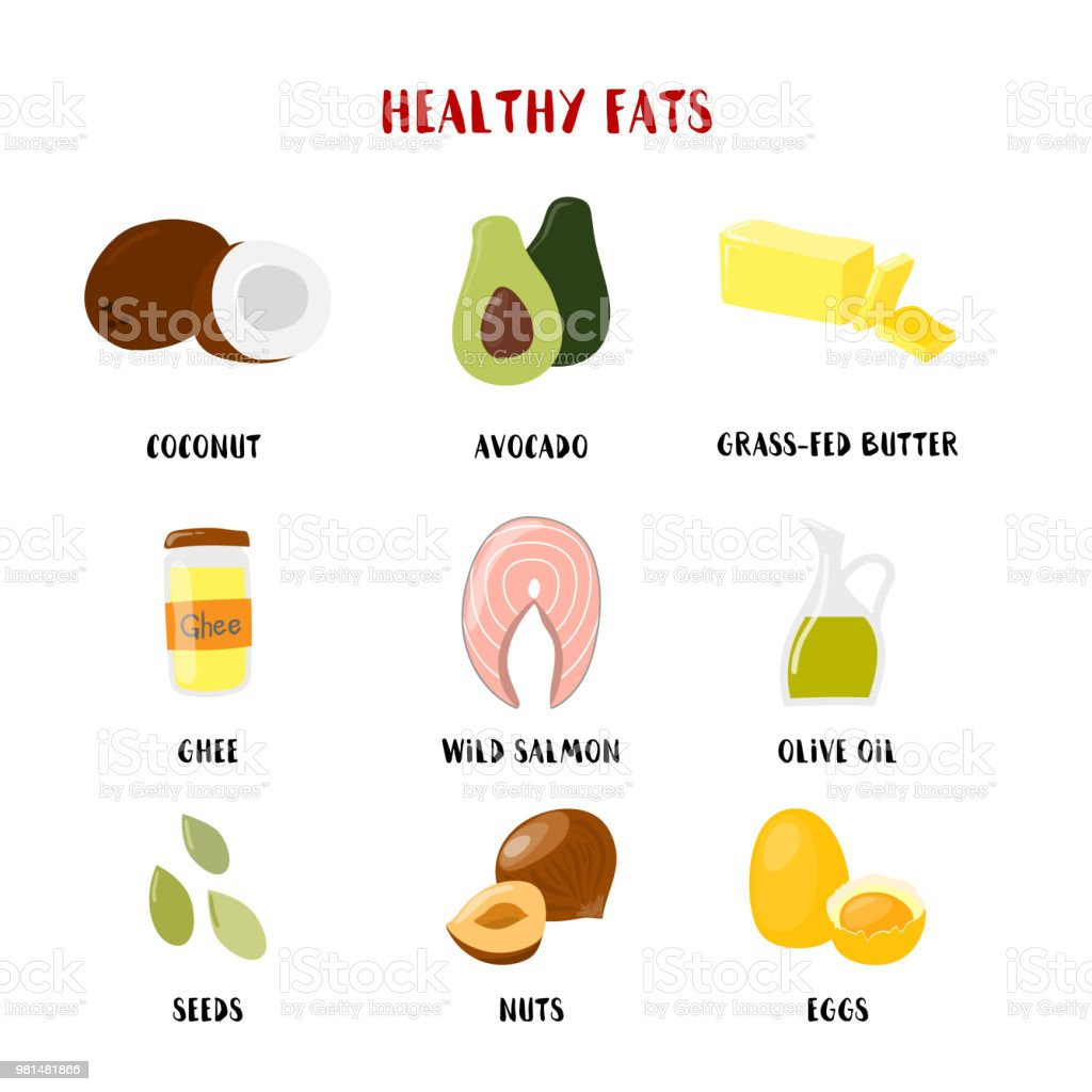 Food with Healthy fats and oils icons set isolated on white. Vector cartoon style illustration vector art illustration
