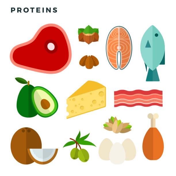 ilustraciones, imágenes clip art, dibujos animados e iconos de stock de alimentos ricos en vector de proteína plano aislados - comida cruda