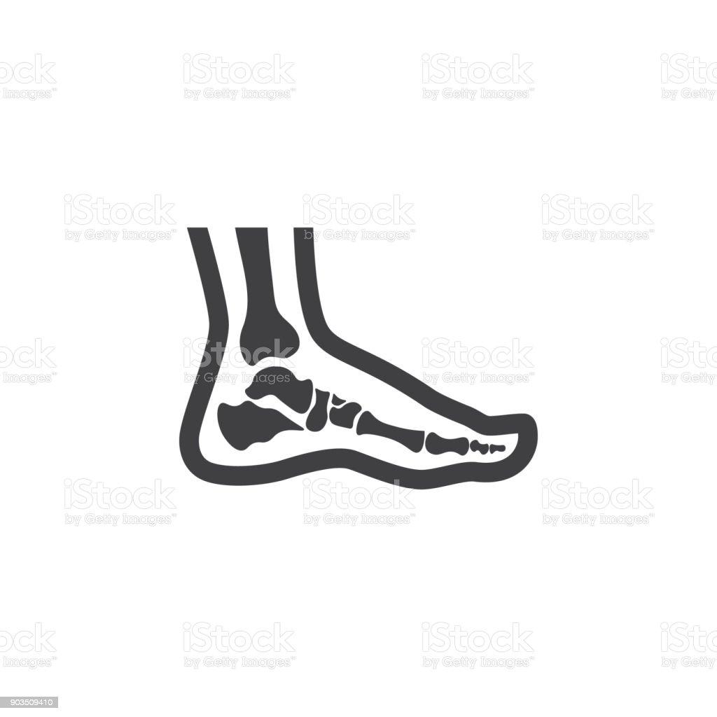 Foot anatomy. Single flat icon on white background. Vector illustration. vector art illustration