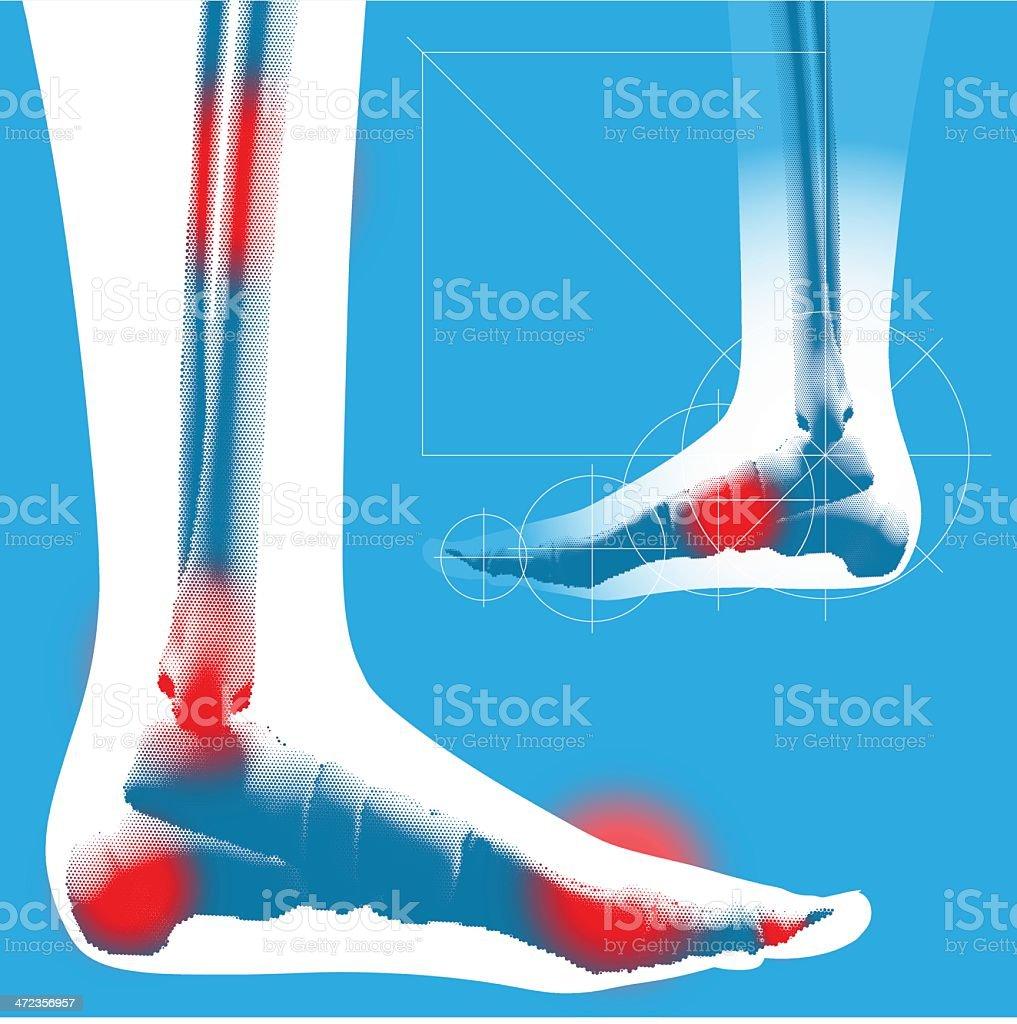 Foot detail - Side view vector art illustration