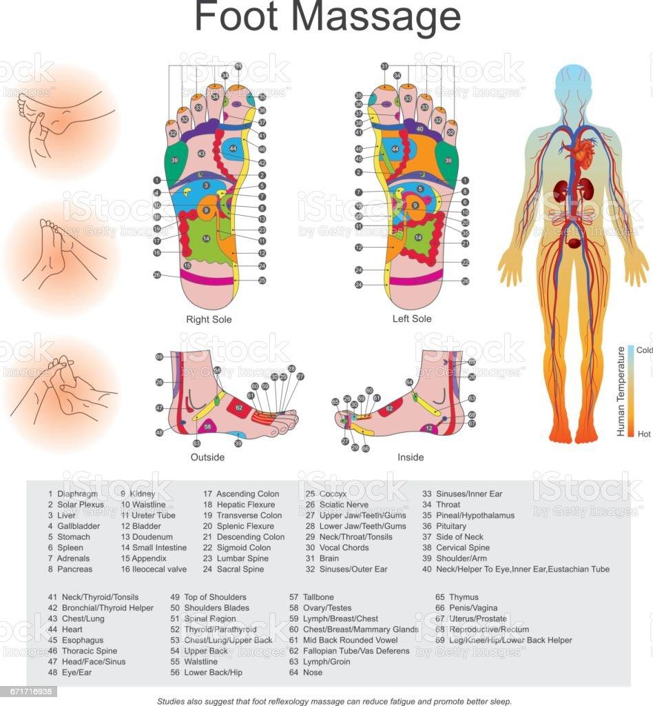 Fußmassage Stock Vektor Art und mehr Bilder von Akupunktur 671716938 ...