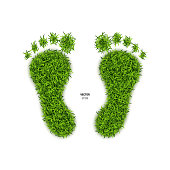 Foot Print Made of Green Grass. Footprint or Barefoot Eco Wildlife Symbol on White Background. 3d Vector Illustration