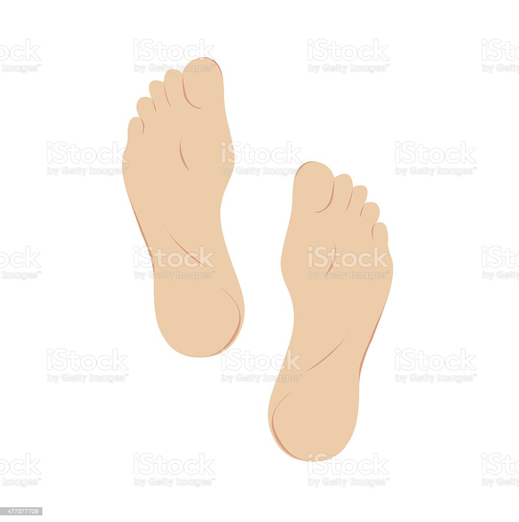Foot Vector Foot Print Bottom View Stock Vector Art & More Images of ...
