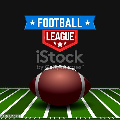 Football leather ball on a field