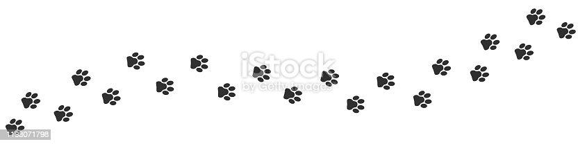 istock Footpath trail of cat 1198071798