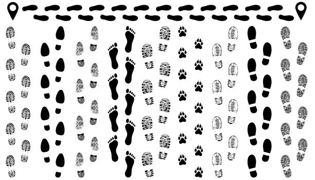Footprint of shoes on the road, isolated set silhouette vector. Traces sole, imprint. Footstep, footwear Footprint of shoes on the road, isolated set silhouette vector. Traces sole, imprint. Footstep, footwear stepping stock illustrations