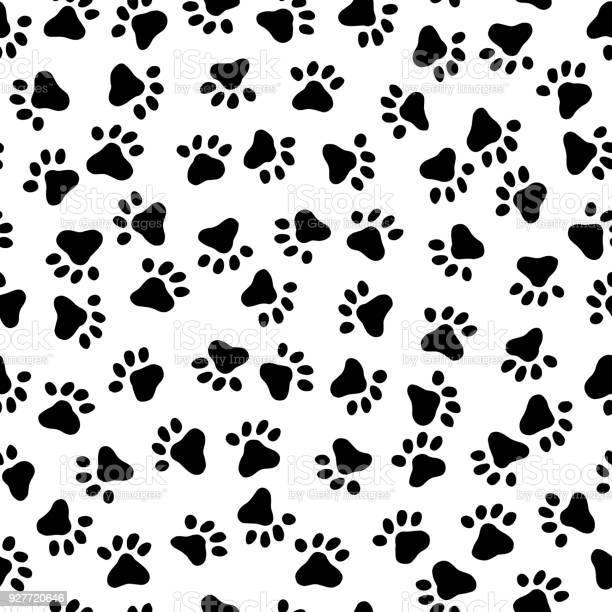 Footprint pattern of the animal vector id927720646?b=1&k=6&m=927720646&s=612x612&h=azjzskx614mbac0oxrtzxjkxaxfgryfaa erg kk6js=