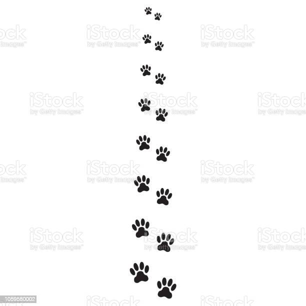 Footprints of dog isolated on white background animal paw icon or vector id1059580002?b=1&k=6&m=1059580002&s=612x612&h=8m 7skiim4yqnt3lmtefnyiearqexfvyvt8rikwyako=