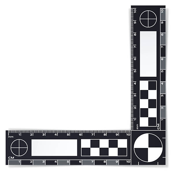 Forensic Police Evidence Ruler Forensic or crime investigation police evidence ruler. EPS 10 file. Transparency effects used on highlight elements. crime scene stock illustrations